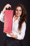 Woman holding a shopping bag Stock Photos