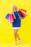 Woman holding shopping baqgs after shopping Stock Photos