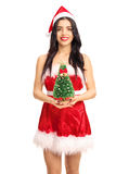 Woman holding a small Christmas tree. Vertical shot of a young woman in a Santa costume holding a small Christmas tree and looking at the camera isolated on Royalty Free Stock Image