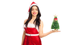 Woman holding a small Christmas tree. Young woman in Santa costume holding a small Christmas tree and looking at the camera isolated on white background Royalty Free Stock Photo