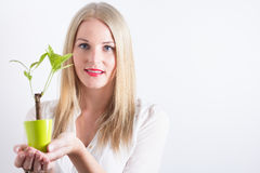 Woman holding a small tree Stock Photography
