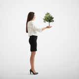 Woman holding small tree Royalty Free Stock Images