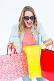 Woman holding some shopping bags Stock Images