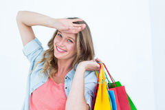 Woman holding some shopping bags Stock Photos