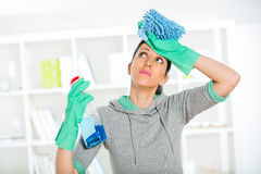 Woman holding a sponge and sprayer for cleaning Stock Photography