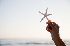 Woman holding a starfish Stock Images