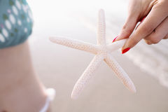 Woman holding starfish at the beach Stock Image