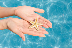 Woman holding starfish in a hands Stock Image