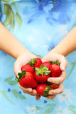 Woman Holding Strawberries Stock Images