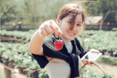 Woman Holding Strawberry Royalty Free Stock Photography