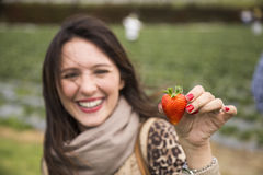 Woman holding a strawberry Stock Photography