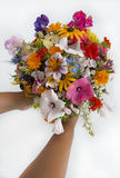 Woman holding a summer flower bouquet Royalty Free Stock Photos