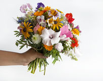 Woman holding a summer flower bouquet royalty free stock images