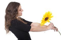 Woman holding a sunflower Stock Image