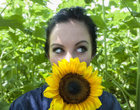 Woman holding sunflower to her face Royalty Free Stock Photography