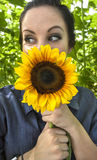 Woman holding sunflower to her face Stock Image