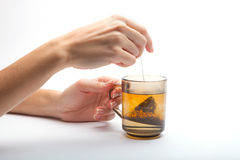 Woman holding tea cup. Stock Photos