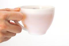 Woman holding tea cup. Stock Photos