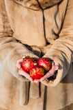 Woman holding three red Christmas balls close-up Stock Image