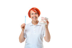 Woman holding toothbrush and mouth model Stock Images