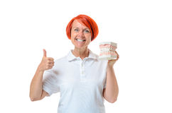 Woman holding toothbrush and thumb up. Cheerful red haired woman holding up her thumb and a human mouth model over white background for dental hygiene concept Stock Photo