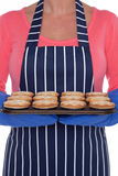 Woman holding a tray of baked mince pies. Royalty Free Stock Photos