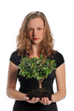 Woman holding a tree Royalty Free Stock Photos