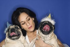 Woman holding two Pug dogs. royalty free stock photos