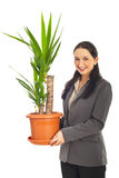 Woman holding vase with Yucca plant Royalty Free Stock Images