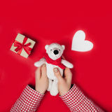 Woman holding white bear on red. Background Stock Images