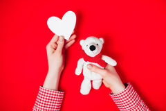Woman holding white bear on red. Background Royalty Free Stock Photo