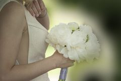 Woman Holding White Flower Bouquet Royalty Free Stock Photos