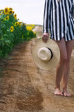 Woman holding a wicker hat next to a sunflower field. Vertical closeup of bare feet Caucasian woman with stripe shirt holding a white wicker hat next to a Royalty Free Stock Photography