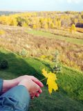Woman is holding a yellow maple leaf against the backdrop of an autumn landscape in the distance. Symbols of autumn stock photography