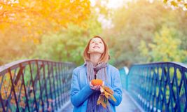 Woman holding yellow maple tree leaves and pumkin in autum park Stock Images