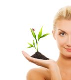 Woman holding young plant Royalty Free Stock Images