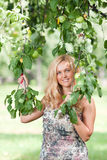 The woman holds an apple-tree branch Royalty Free Stock Images
