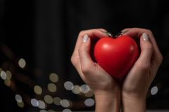 Woman holds big red heart in her hand stock photo