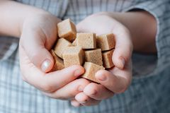 Woman holds brown sugar cubes in hands. Woman holds brown sugar cubes in hands royalty free stock images