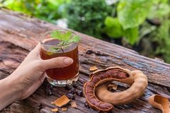 Woman holds delicious sweet drink tamarind royalty free stock images