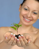 The woman holds in hands soil with a plant Royalty Free Stock Image