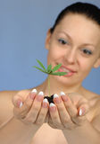 The woman holds in hands soil with a plant Stock Image