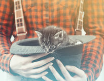 Woman holds hat with kitten Royalty Free Stock Photo