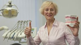 Woman holds layout of human teeth. Senior blond woman holding layout of human teeth in her hand. Female caucasian patient posing against background of dental Royalty Free Stock Photography