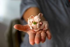 Woman holds a lucky charm in her hand, a lucky pig royalty free stock image
