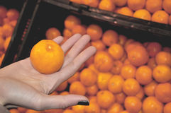 Woman holds an Orange in a Vegetable Store Stock Images