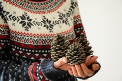 Woman holds pine cones Stock Images