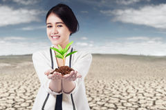 Woman holds plant at drought land Royalty Free Stock Photography