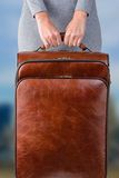 Woman holds suitcase Stock Images