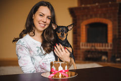 Woman holds toy terrier with dog cake infront on birthday party Royalty Free Stock Photography
